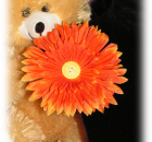 Handmade Orange Daisy Hair Clip with Yellow Button