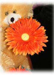 Handmade Orange Daisy Hair Clip with Yellow Button